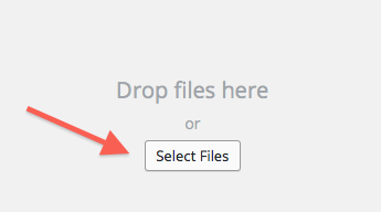 Select Files in Media Uploader